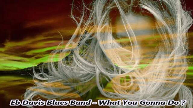 Eb Davis Blues Eb Davis Blues Band - What You Gonna Do ? / С вградени BG субтитри