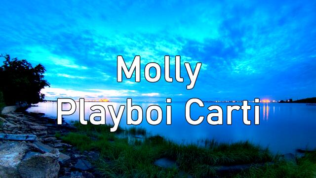 Playboi Carti - Molly (Slowed down by 0.02%) (Destxmido Remix)