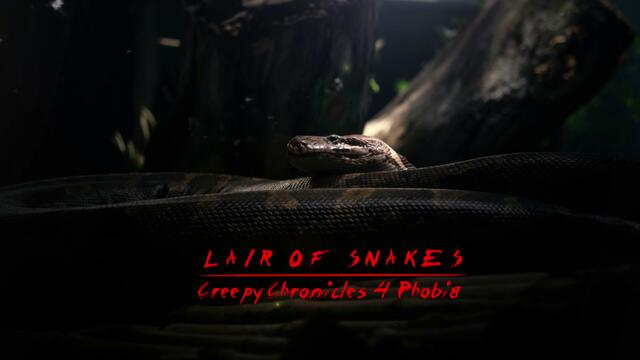Lair Of Snakes (official audio)